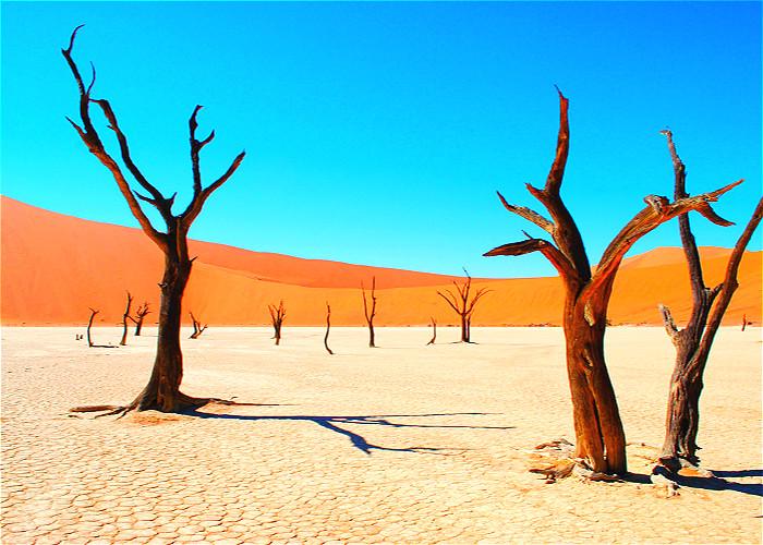 Jour 23:  Swakopmund – Canyon de Kuiseb – Désert du Namib