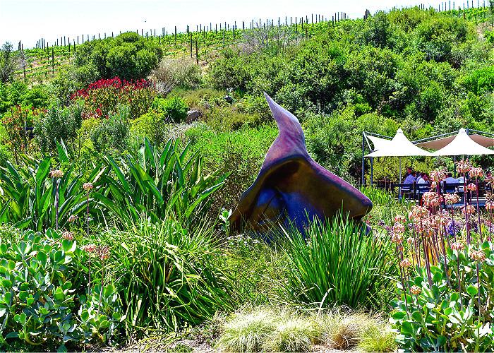 Jour 5: Le Cap – Route des Vins – Swellendam -270km