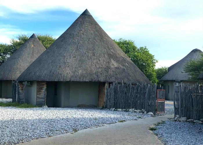 Jour 18: Otjiwarongo – Parc National d'Etosha