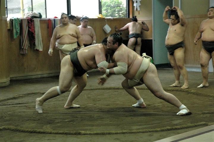 Nous avons pu assister à un entrainement des lutteurs sumos au Japon